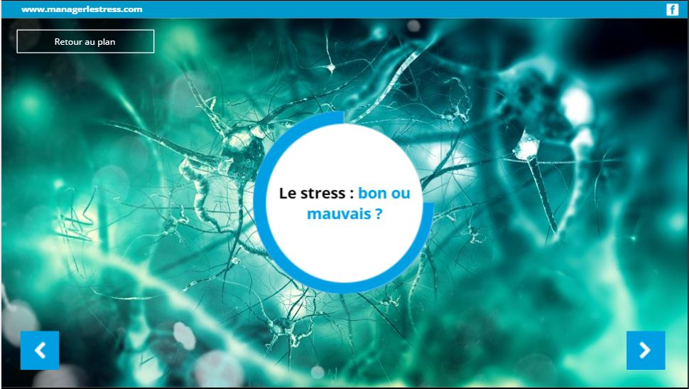 Votre profil stress en bref: un outil anti stress à portée de tous